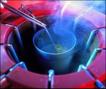 Sperm, Oocyte and Embryo Freezing